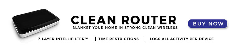 Clean Router