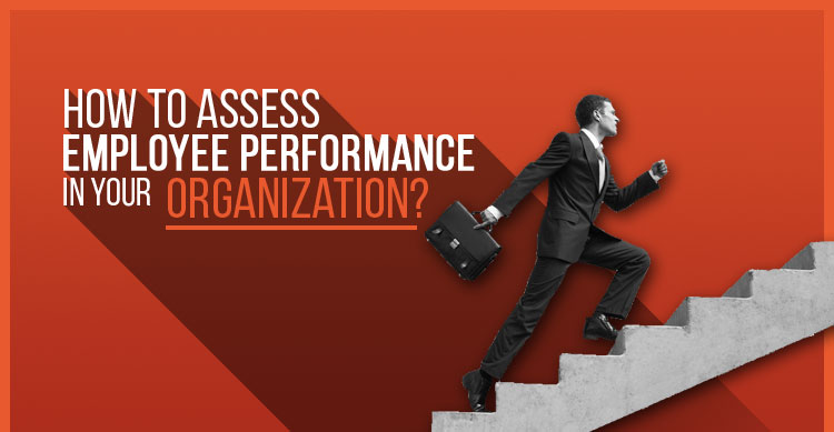 How to assess employee performance in your organisation featured image